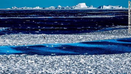 Para ilmuwan telah mencatat gelombang panas pertama di bagian Antartika ini