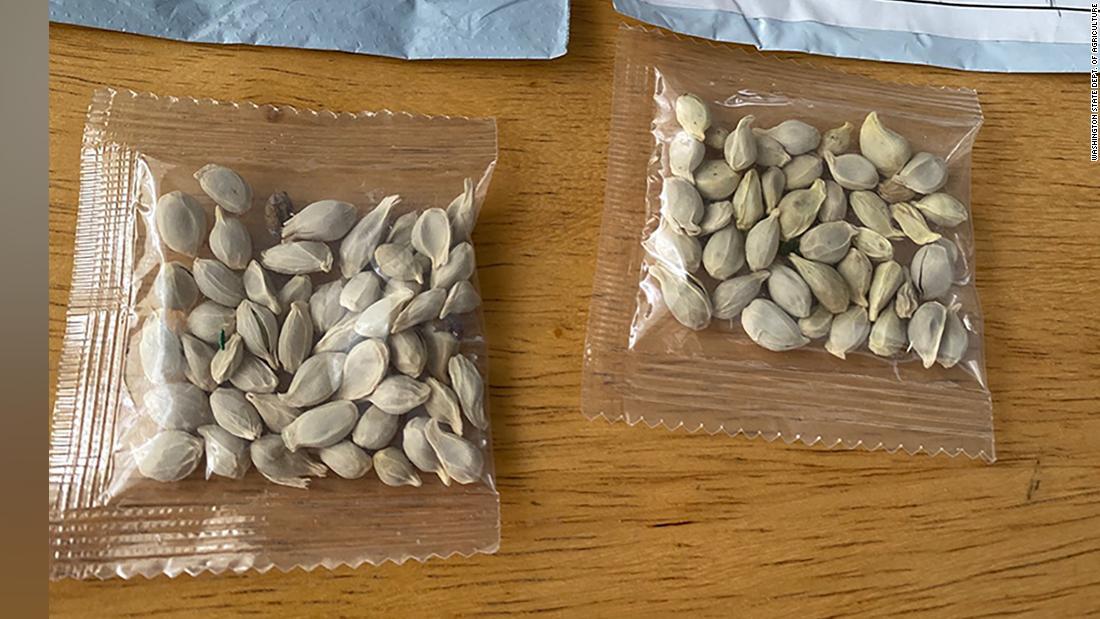 Negara memperingatkan orang tentang paket mencurigakan benih yang tampaknya berasal dari Cina