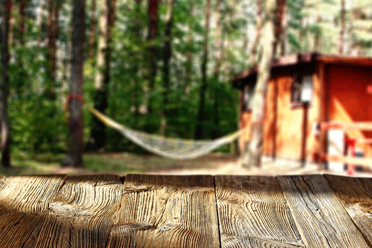 Kamp Georgia ditutup karena 260 tes positif untuk COVID-19